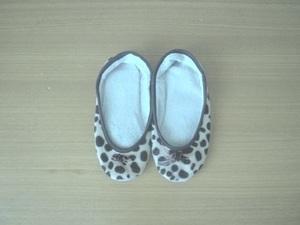 room shoes_before.JPG